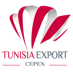 Tunisia Organises e-Business Exchange for Nigerians