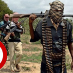 """Can """"No Fly-Zone"""" Squeeze Out Banditry from Zamfara?"""